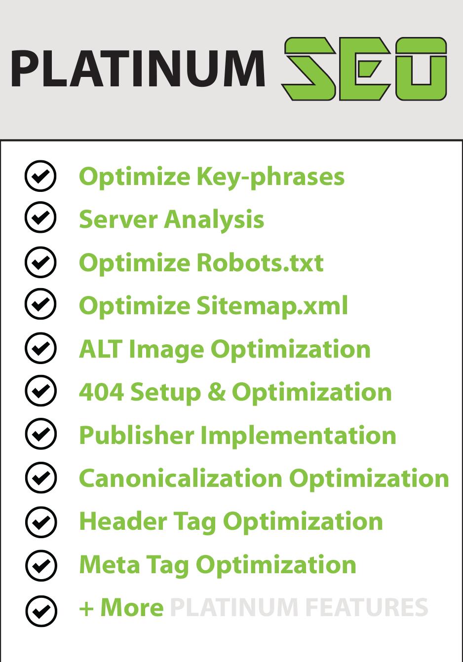 seo rankin search engine optimization marketing 12 month