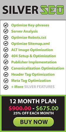 seo campaign plans search engine optimization marketing google